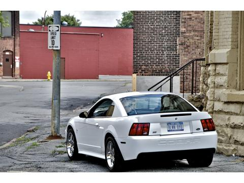 2000 Ford Mustang GT Coupe in Crystal White