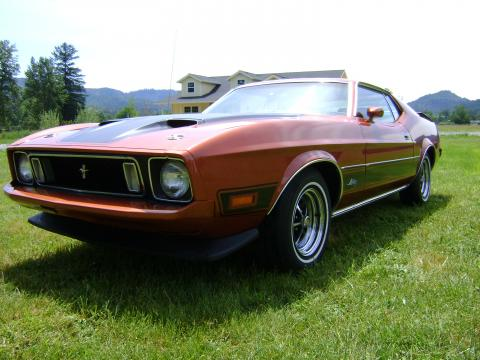 1973 Ford Mustang Mach 1 Fastback in Chestnut