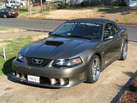 2001 Ford Mustang Saleen in Mineral Grey Metallic