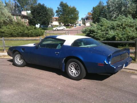 1981 Pontiac Firebird Trans Am Coupe in Bright Blue Metallic