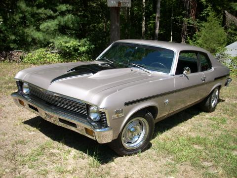 1973 Chevrolet Nova Coupe in Pewter w/Black Stripes