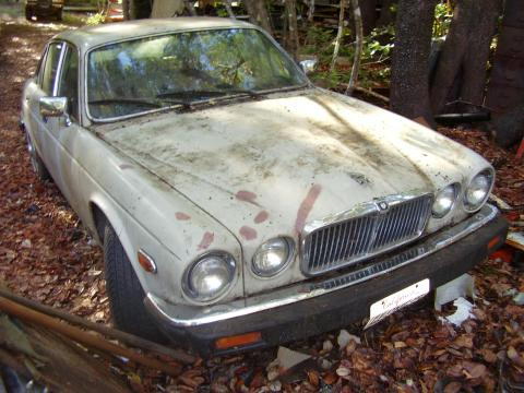 1985 Jaguar XJ XJ6 L in Light Tan