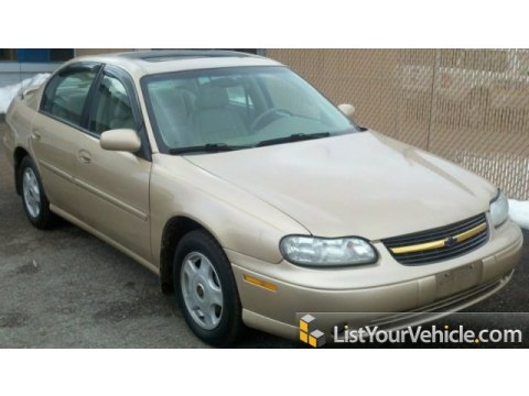 2001 Chevrolet Malibu LS Sedan in Light Driftwood Metallic
