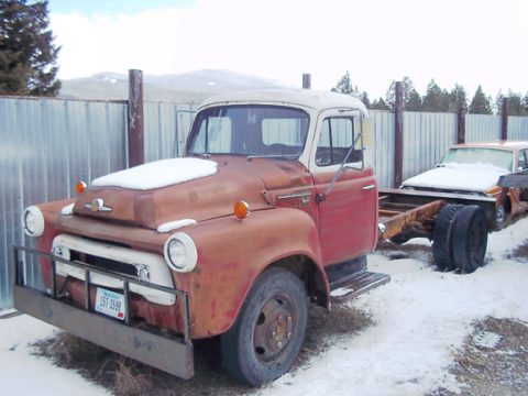 1957 International 130 1 1/4 Ton Truck in Brown & White