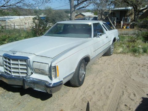 1979 Ford Thunderbird 2 Door Coupe in Silver Gray